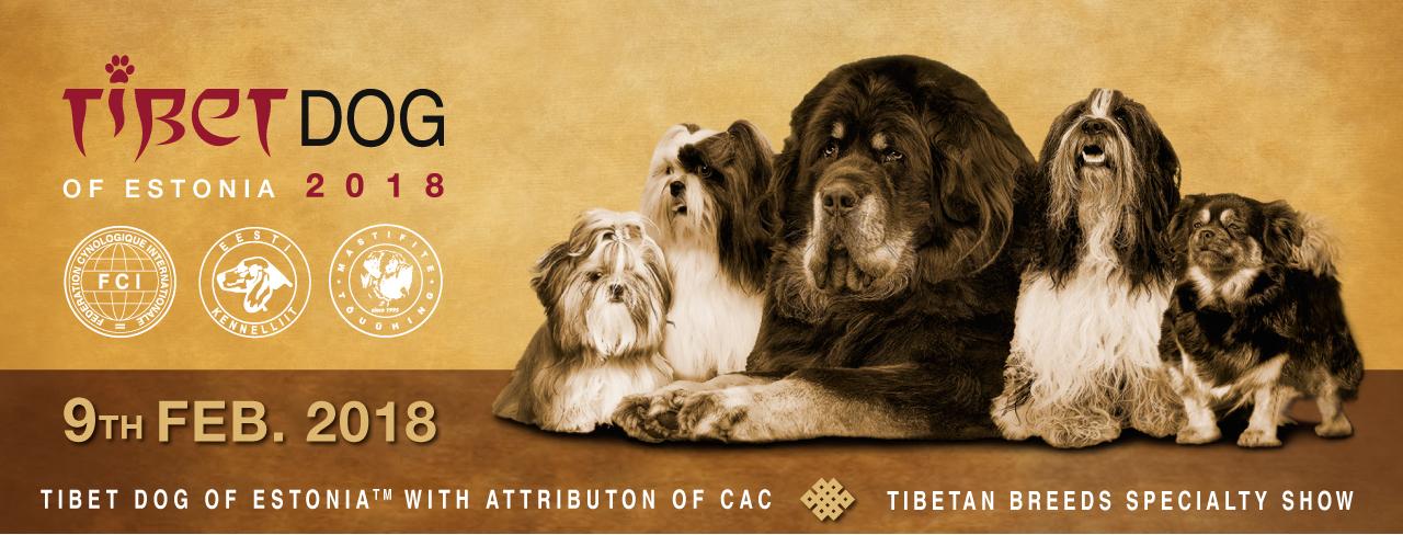 Tibetdog of Estonia